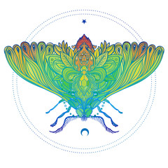 Colorful gradient decorative vector illustration of moth isolated on white over sacred geometry lines. Tattoo design. Coloring book for adults. Nature, spirituality, occultism, alchemy