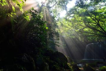 鍋ケ滝の光芒