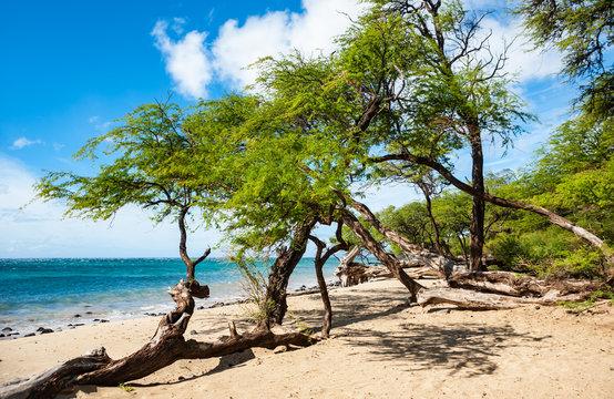 Makena Beach, Maui island in Hawaii