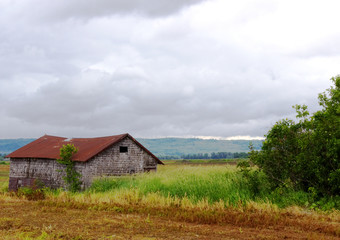 Old shack in the field-Stock Photos