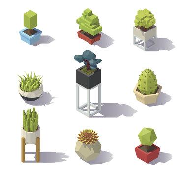 Isometric low poly Plants