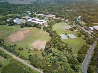 Green sport fields