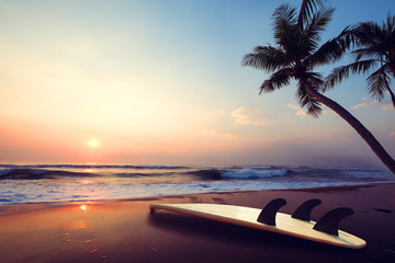 Wall Mural - Silhouette surfboard on tropical beach at sunset in summer. landscape of summer beach and palm tree at sunset. Vintage color tone