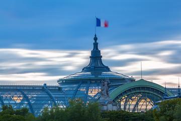 Toit du Grand Palais Fototapete