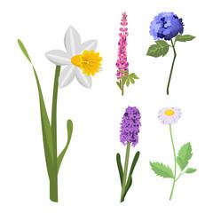Beautiful spring flower botanical bloom watercolor painting summer branch petal decoration bouquet nature design vector illustration