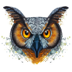 A drawing of a night owl, painted by watercolors, an owl with a bright coloring