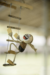 Coconut shell doll for mobile hanging