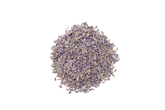 Heap of dry lavender tea, isolated on white background, top view