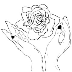 Hands holding a rose flower isolated outline