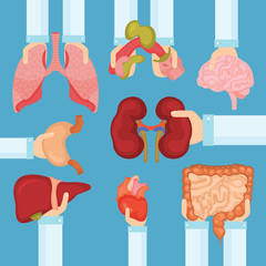 Human organ for transplantation concept with hands, medical banner