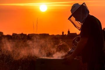 Imker bei der Arbeit im Sonnenuntergang - Silhouette einer Stadt im Hintergrund