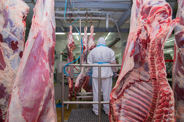 cutting meat slaughterhouse workers in a meat factory.