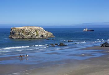 Northwest coast - Bandon beach, Oregon