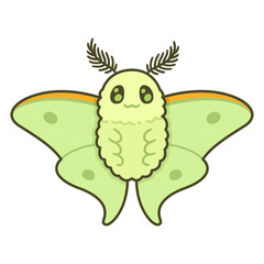 Cute cartoon moth
