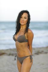 Woman in a sexy bikini posing on the beach