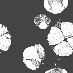 Black and white vector bouquet of cotton flowers. Botanical illustration. Seamless pattern. hand drawn graphic image.