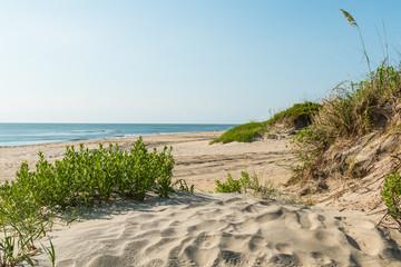 Coquina Beach on the Outer Banks in North Carolina at Cape Hatteras National Seashore. Wall mural