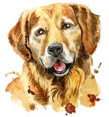 Watercolor portrait of golden retriever