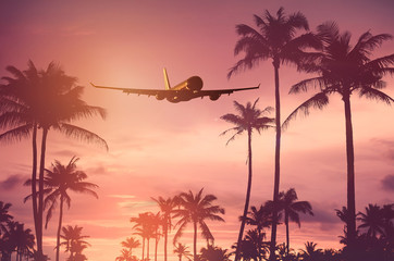 Airplane flying over tropical palm tree and sunset sky abstract background.