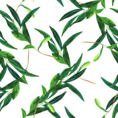 Seamless pattern with watercolor olive branch on white
