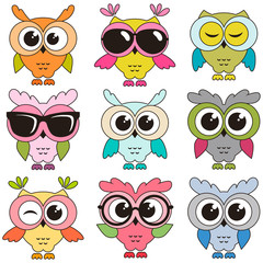 Set of cool colorfull owls isolated on white background