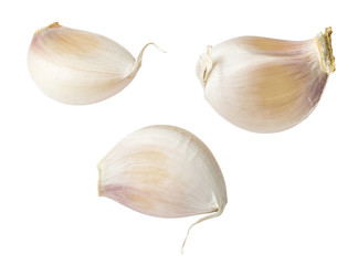 Garlic isolated on white background (clipping path included)