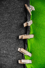 black green coalition
