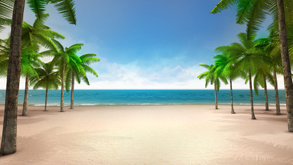 sandy beach with sea and tropical palms