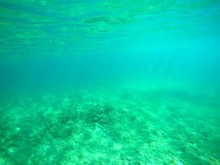 Colorful sea floor in Sardinia