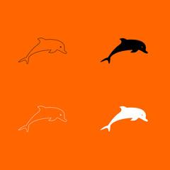 Dolphin icon .