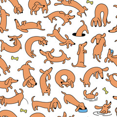 Dachshund Dog Seamless Vector Pattern And Background