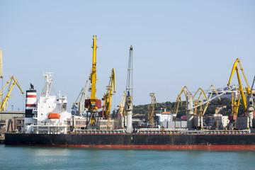 Port terminal of bulk cargo with ship