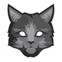 A fluffy gray cat