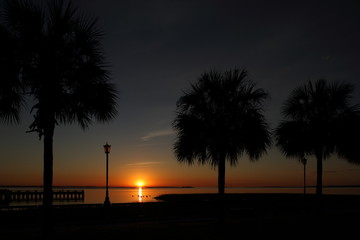 Silhouette of Palm Trees on Tropical beach and ocean against dark orange sunset