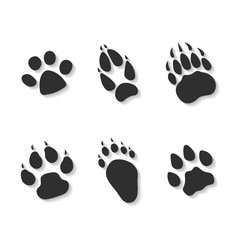 Set print of paws of predators.