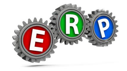 ERP gears