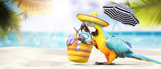 Fotobehang Papegaai Papagei als Paradiesvogel am Strand - Urlaub Konzept