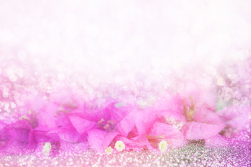 purple flower Bougainvillea on bokeh land glitter light soft background with copy space