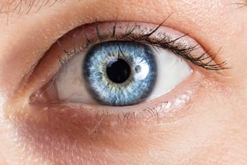 Datails of female deep blue eye