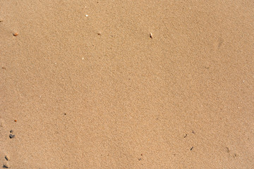 Beach sand texture top view