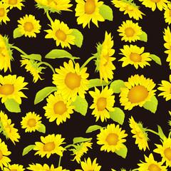 beautiful yellow sunflower background pattern