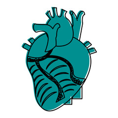 human heart icon image