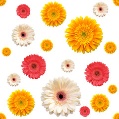 seamless pattern with gerbera flowers