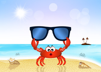 crab with sunglasses on the beach