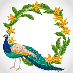 Wreath with peacock, lily flowers and leaves. Hand drawn vector illustration in watercolor style