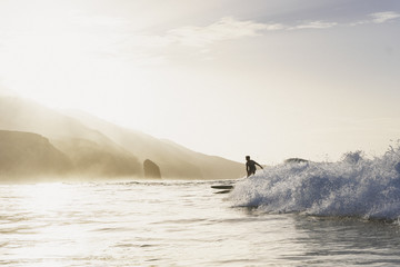 Young surfer riding sunlit wave, Fuerteventura, Canary Islands, Spain