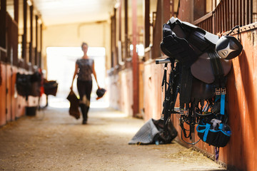 Fotobehang Paardrijden Horse riding equipment