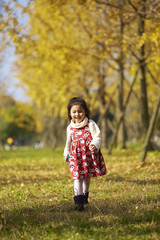 lovely little girl running in the autumn ginkgo woods