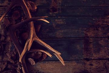 Seasonal stag antlers on dark woodgrain