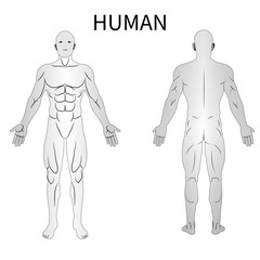 male human body front and black view